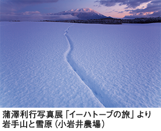 iwate_320_259.png