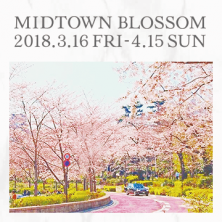 MIDTOWN BLOSSOM 2018