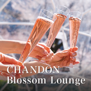 CHANDON Blossom Lounge