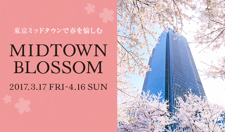 MIDTOWN BLOSSOM